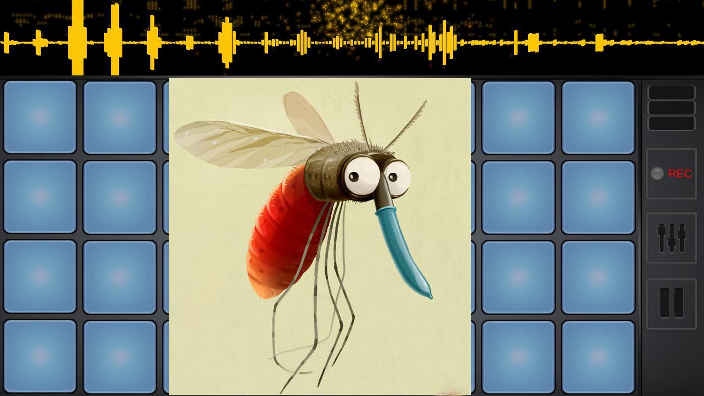 комар фотография